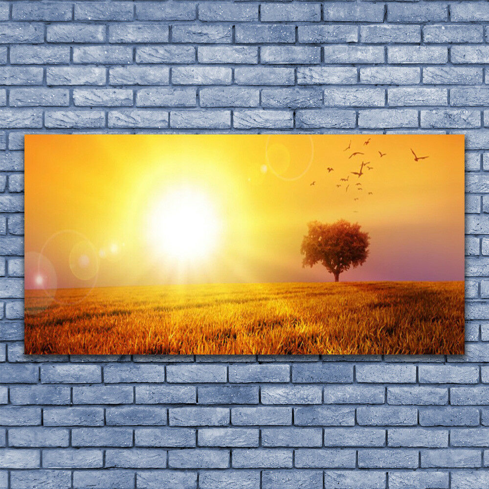 Glass print Wall art 140x70 Image Picture Sun Meadow Landscape