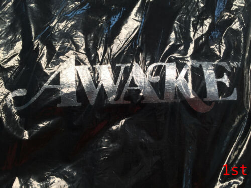 Awake Ny Metallic Foil Logo Hoodie Large Black Brand New Sold Out Ds Sweater Sup Clothing, Shoes & Accessories Activewear