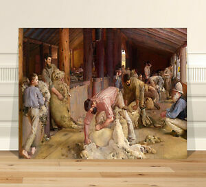 Classic-Australian-Fine-Art-CANVAS-PRINT-8x10-034-Shearing-Rams-by-Tom-Roberts