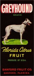 Sanford Florida Golden Galleon Orange Citrus Fruit Crate Label Art Print
