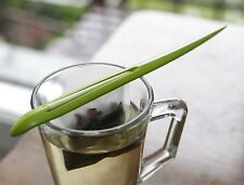 Kikkerland de hojas de té Clip Sueltas té Herbal Bolsa Infusor Titular & 50 Filtros De Regalo