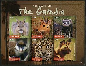 Gambie-2015-animaux-de-la-Gambie-feuille-neuf-sans-charniere