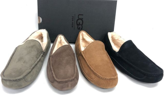 UGG Ascot Leather Black Slippers for