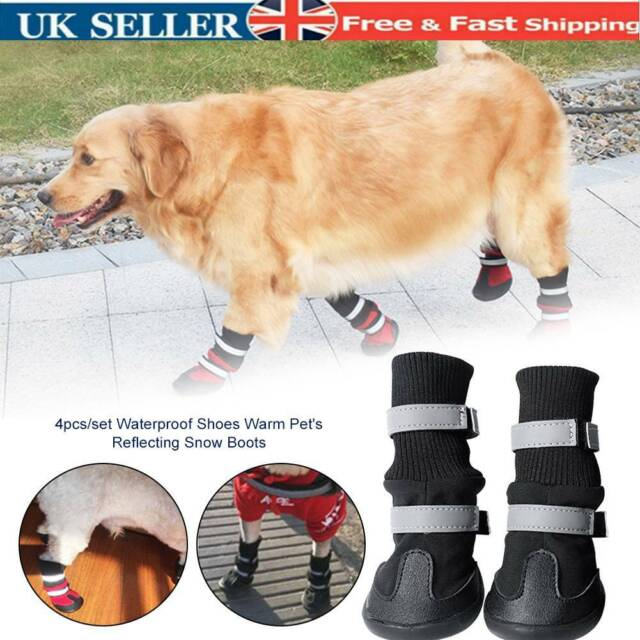 Pet Dog Boots Paw Protecting Neoprene
