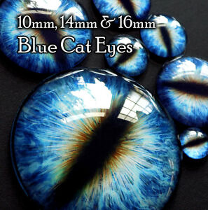 Taxidermy Glass Dragon, Doll, Cat, Model, Craft Eyes, Blue 10mm, 14mm, 16mm