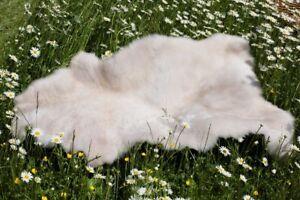 Peau-de-Mouton-Creme-Beige-Tachete-100-110-cm-Merinos-Fourrure-Naturelle-Tapis