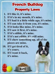 FRENCH BULLDOG Property Laws Magnet Personalized With Your Dog/'s Name #2