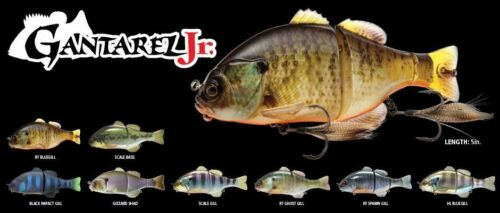 JACKALL GANTAREL JR JUNIOR JOINTED SWIMBAIT  Scale Bass JGANT-SCB