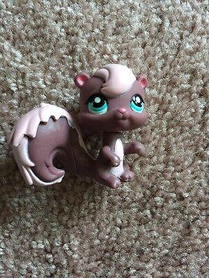 Littlest Pet Shop~#1904~Squirrel Skunk~Purple Pink~Blue Dot Eyes