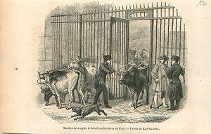 Abattoirs-de-Vaugirard-Betail-Barriere-Paris-de-Karl-Girardet-GRAVURE-PRINT-1853