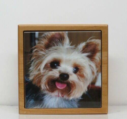 rot Alder Alder Alder Wood Small Dog Pet Urn with Custom Tile Photo & Engraved Tag 256a0e
