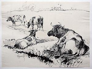 Paul-Gross-1873-1942-weidende-Rinder-Tusche-um-1931-Neue-Sachlichkeit-Kuehe