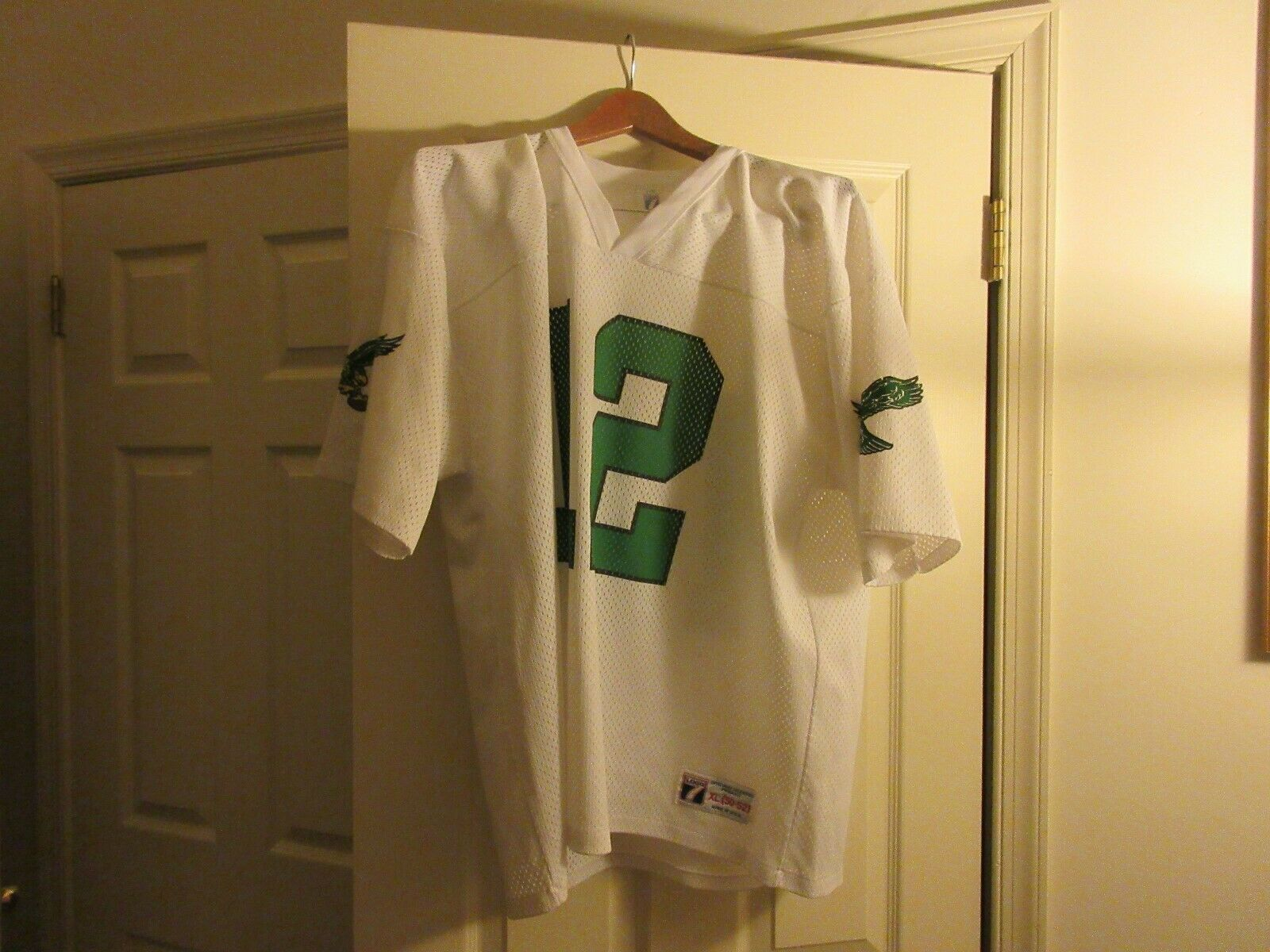 N.F.L., Football , RANDALL CUNNINGHAM . Philadelphia Ea