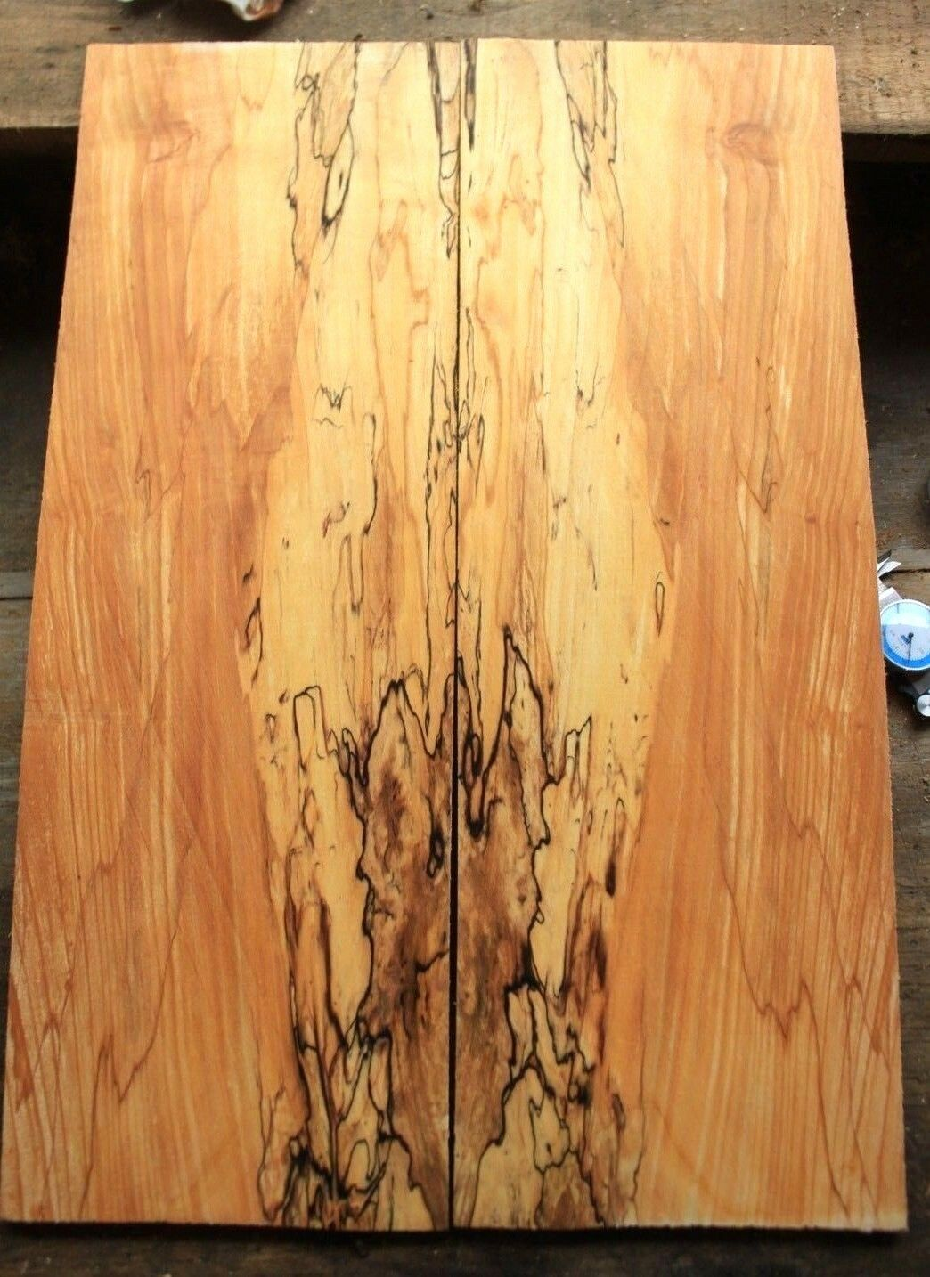Curly figuROT spalted ink line maple drop top .38