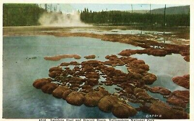 Vintage 1940s Yellowstone Park Postcard Sapphire Pool Biscuit Basin