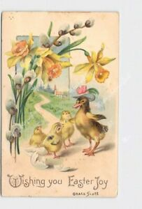 PPC-POSTCARD-EASTER-JOY-DUCKLING-WITH-HAT-CHICKS-DAFFODILS-PUSSY-WILLOW-EMBOSSED