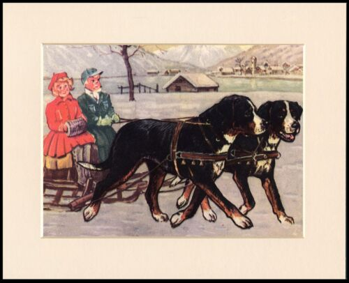BERNESE MOUNTAIN DOG DOGS PULLING SLEDGE LOVELY PRINT MOUNTED READY TO FRAME