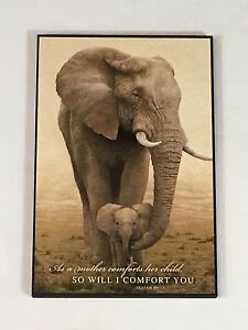 Image Is Loading Spiritual Infant Mother Amp Baby Elephant Wall Art