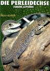 Perleidechse von Ingo Kober