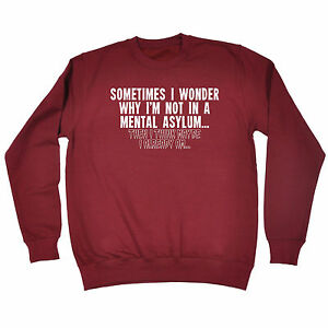 Sometimes-I-Wonder-Mental-Asylum-SWEATSHIRT-birthday-fashion-funny-crazy-gift