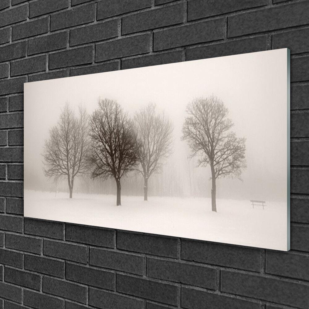 Image sur verre Tableau Impression 100x50 Paysage Arbres Neige