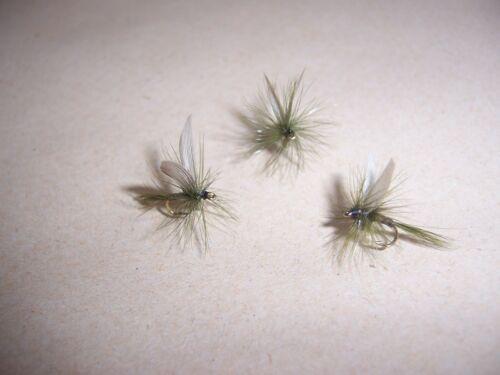 12 x Dry Oliva Quill Dry Trota Pesca Mosche Taglia 16 da Salmoflies