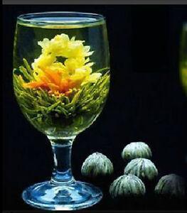 Teeblumen-Teerose-Erbluehtee-Teekugeln-10-Stueck-Handgemachte-Bluehende-Gruener-Tee