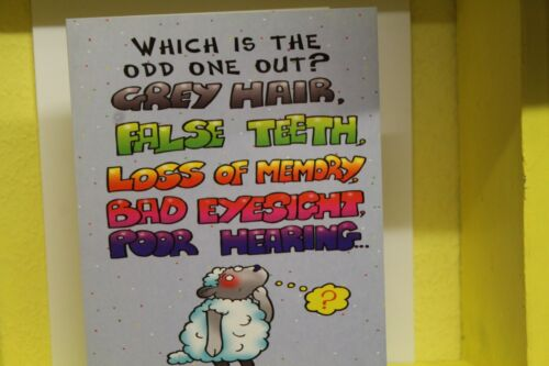 QUALITY CARD /& ENVELOPE Humour - HAPPY   BIRTHDAY CARD
