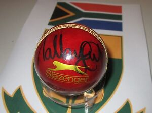 MAKHAYA-NTINI-HAND-SIGNED-RED-CRICKET-BALL-UNFRAMED-PHOTO-PROOF-amp-C-O-A