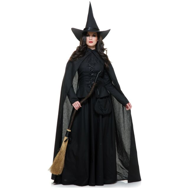 Wicked Witch Costume Adult Halloween Fancy Dress