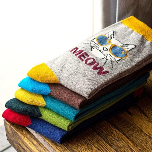 New Fashion 5 Paires Homme Chaussettes Lot Coton Tricot Chat Design Chaud Robe Décontractée Chaussettes