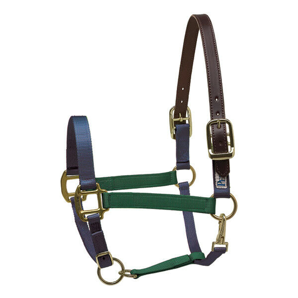 NEW Perri's color Vision Nylon Safety Halter - Pony, Hunter Green   Navy