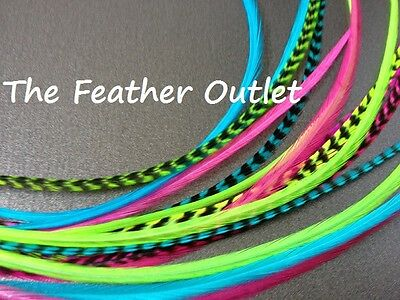 Lot 15 Grizzly Feathers Hair Extensions long thin skinny striped Real Color NEON
