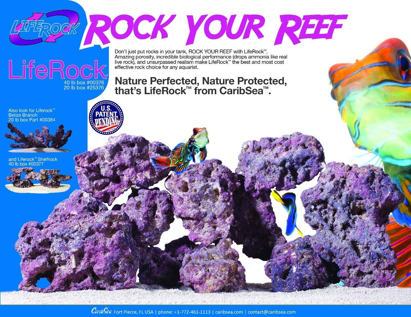 Caribsea Life Rock 9kg 20 LBS Box Real Reef Aquarium lila Live Rock Fish Tank
