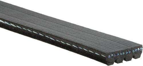 Serpentine Belt-Premium OE Micro-V Belt Gates K040365