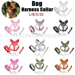 L-M-S-XS-Leather-Dog-Harness-Collar-Leash-Set-Spiked-Studded-Terrier-Staffy