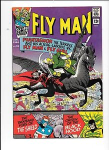 Fly-Man-35-Adventures-Of-The-Fly-January-1966