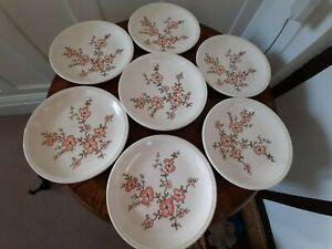 Biltons-x 8 Vintage Té Floral Rosa/Marrón/placas laterales 6.75 Pulgadas Excelente Estado