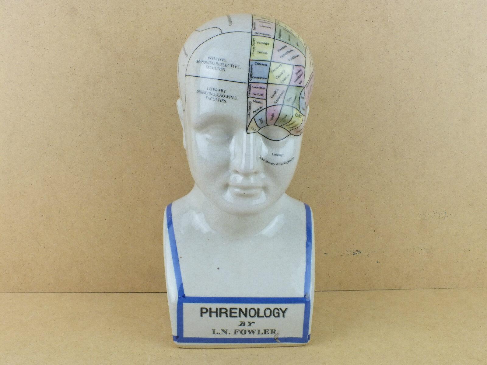 Großer Porzellan Kopf Phrenology Kopf By L.N. Fowler Büste Porzellankopf Farbig