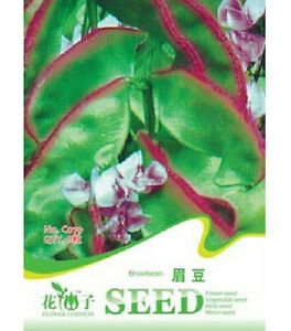 Chinese Vegetable seeds 5g Large Purple lace haricot bean color pack 原装彩包紫边大扁豆