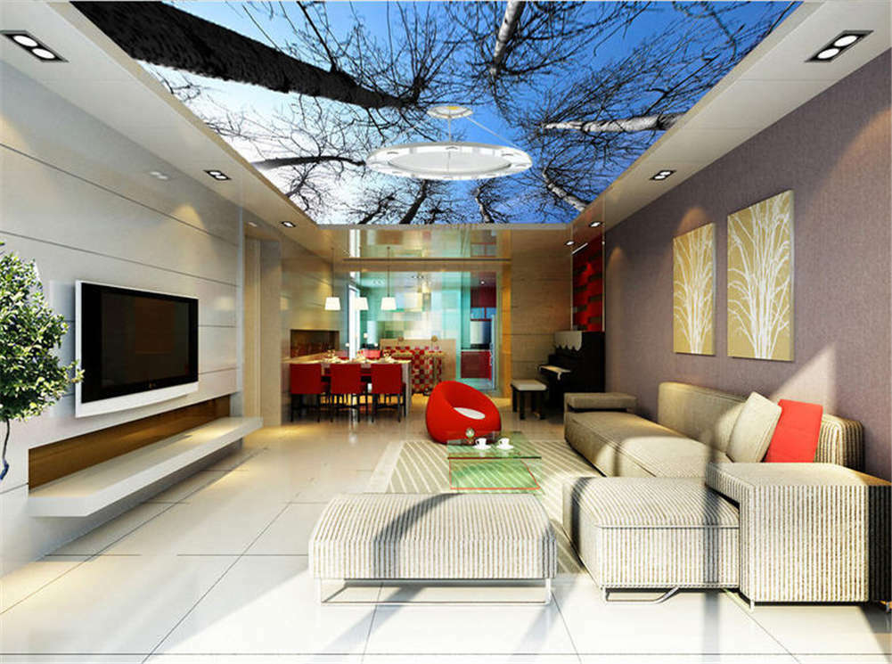 Prime Sunny Sky 3D Ceiling Mural Full Wall Photo Wallpaper Print Home Decor
