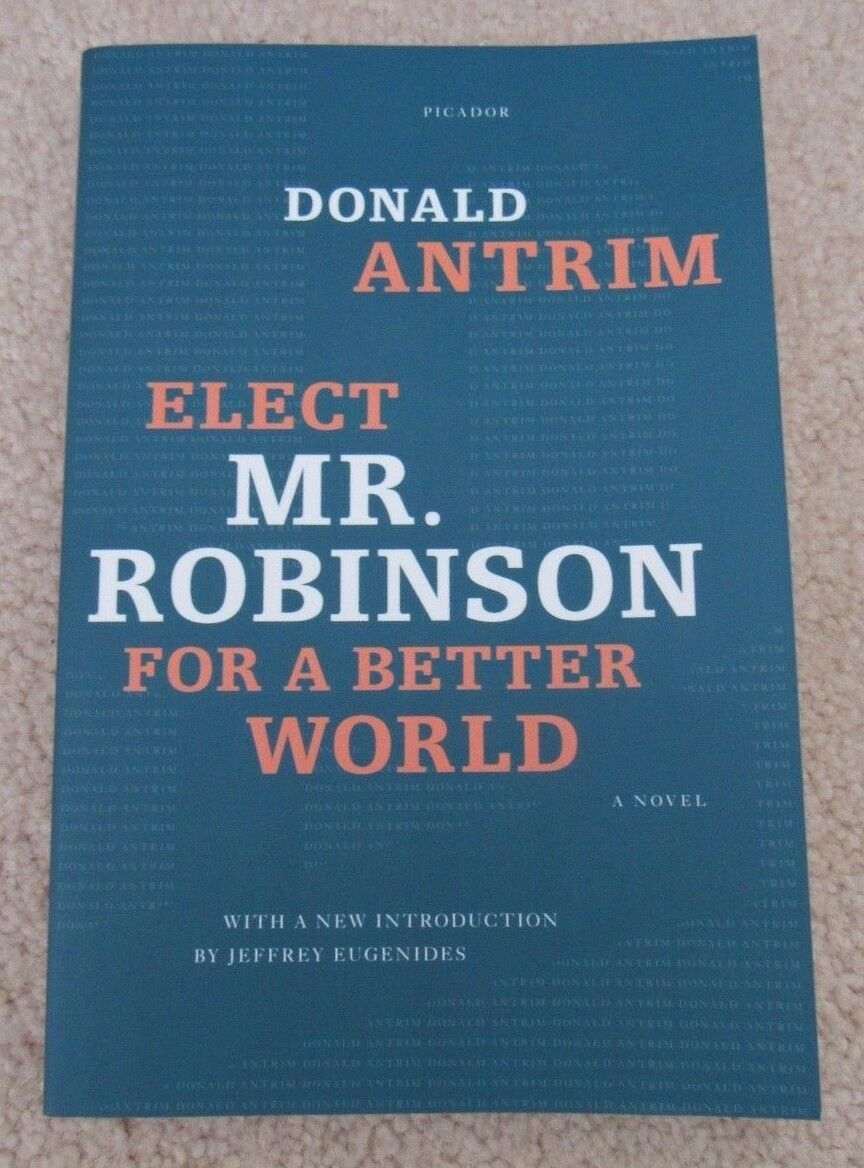 elect mr robinson for a better world antrim donald