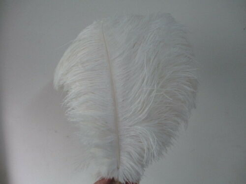 Wholesale beautiful natural ostrich feather 35-40 cm //14-16 inches free shipping