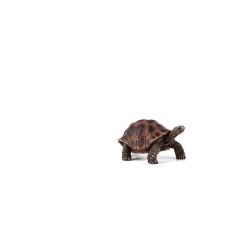 Statuina Animal Planet Tartaruga gigante