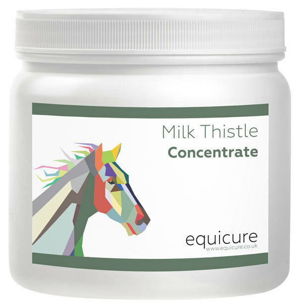 Equicure Milk Thistle Concentrate 100g - Liver Support & Detox For Horse   Pony