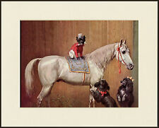 AFFENPINSCHER POODLE AND HORSE CIRCUS DOGS DOG PRINT MOUNTED READY TO FRAME