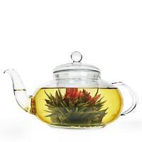 Primula 40-oz. Daisy Glass Tea Pot, Clear , New, Free Shipping on sale
