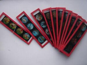 Bilder, Bildstreifen Glas für Laterna Magica