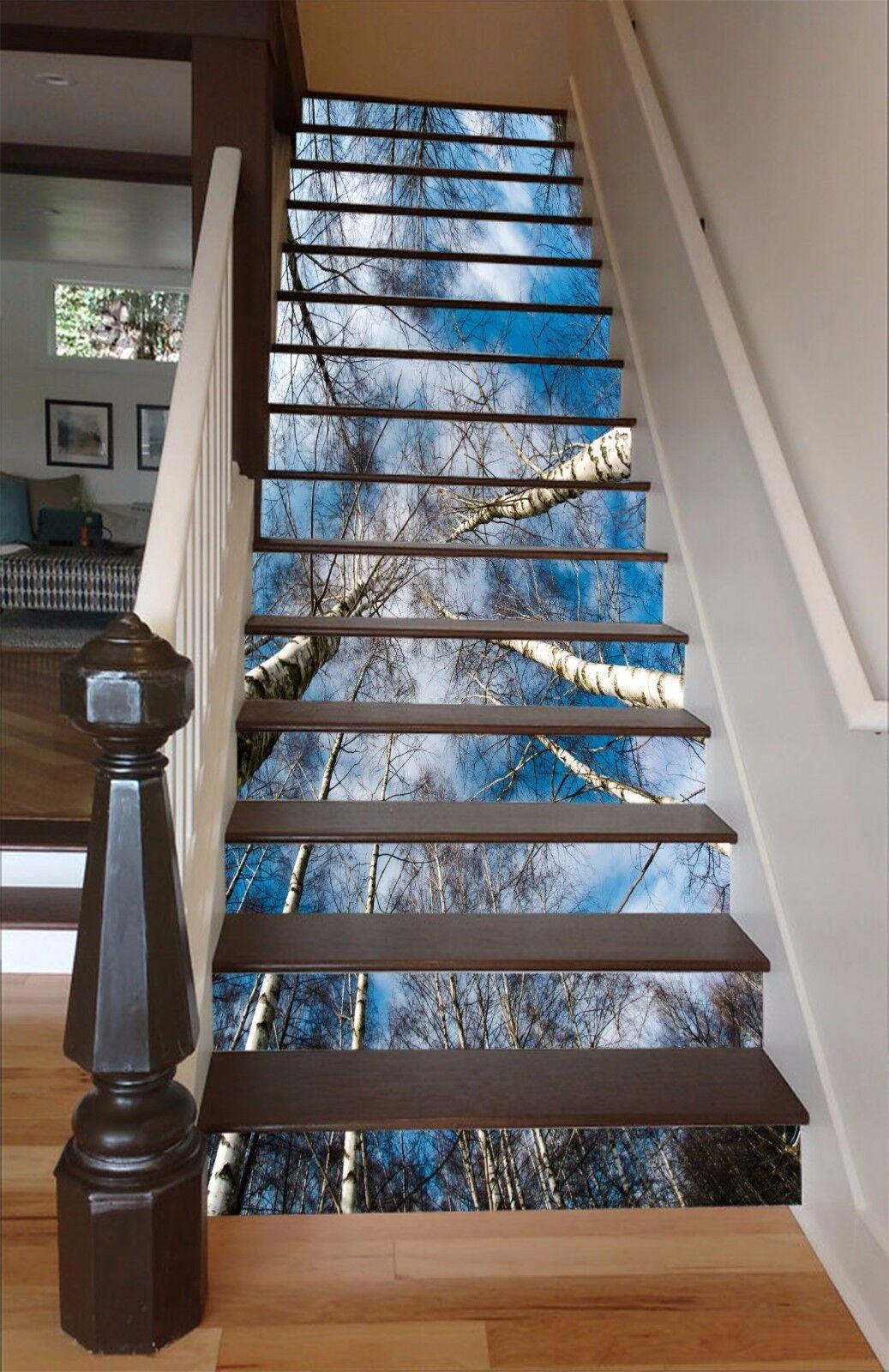 3D Birke Wald 829 Stair Risers Dekoration Fototapete Vinyl Aufkleber Tapete DE