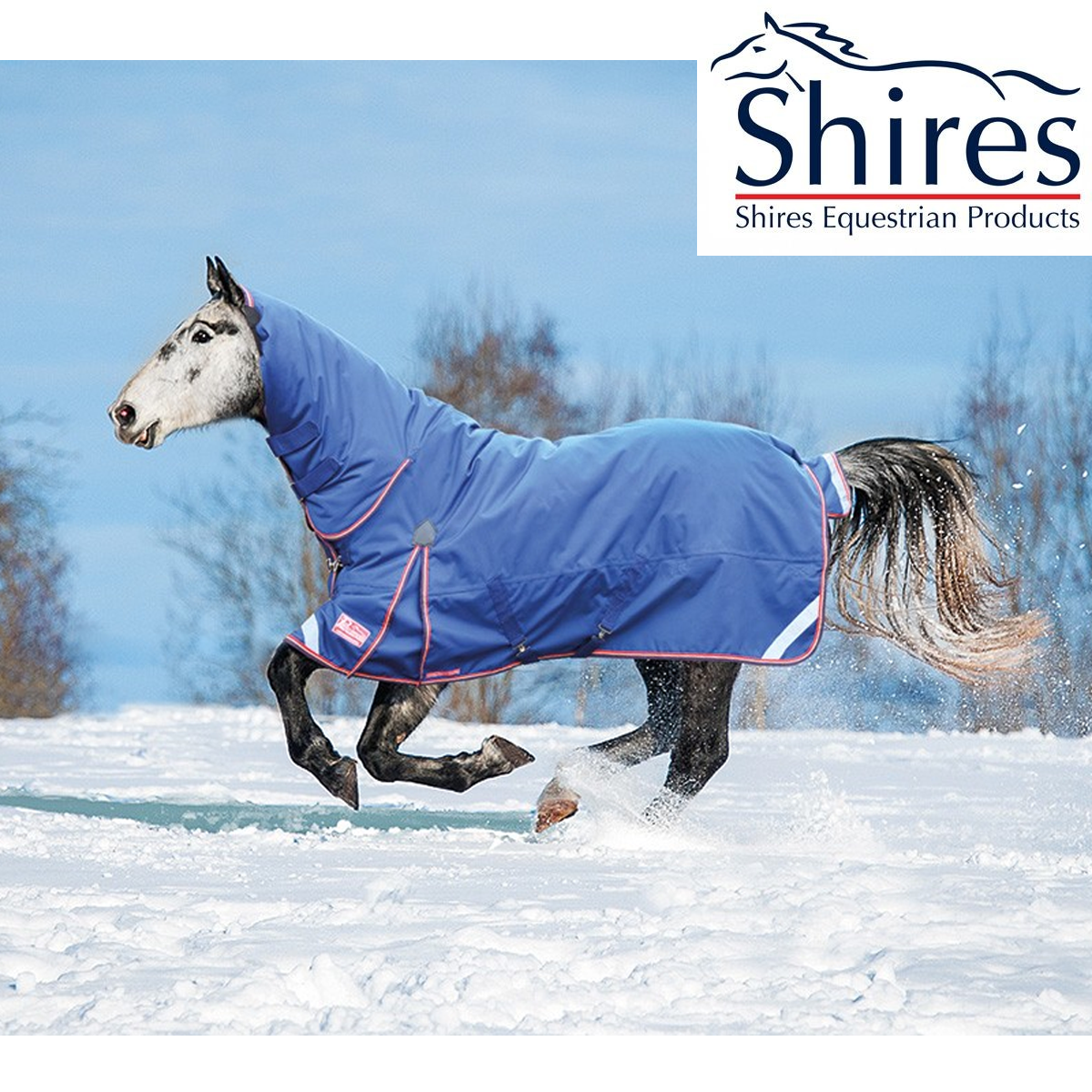 Shires Typhoon 300g Combo Turnout SHIPPING Rug SALE FREE UK SHIPPING Turnout 5fc681